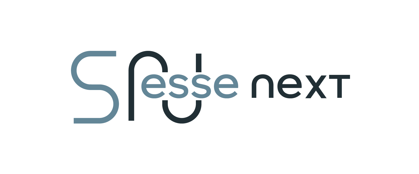 essenext partner ranocchi software torino piemonte